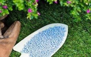 Аммиачная селитра удобрение применение на огороде