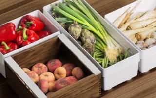 Сроки хранения овощей